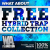 FREE Hybrid Trap Collection