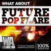 Future Pop FLARE DEMO Pack