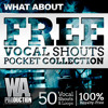 What About Free Vocal Shouts Pocket Collection